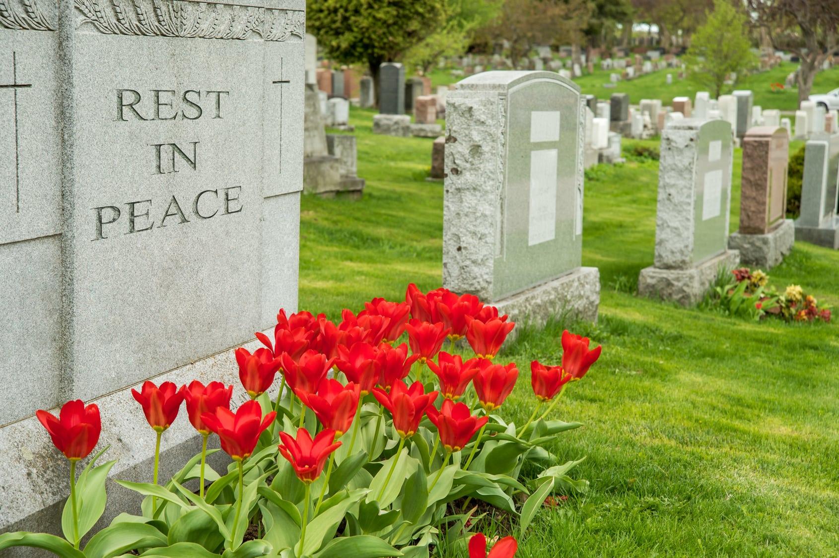 Ideoiden eutanasia – miksi se on niin vaikeaa?