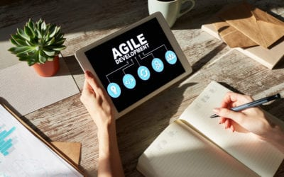 Scaling agility can only be done from the company's own perspective
