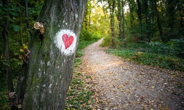 Asiakasymmärryksen ABC – Tie asiakkaan sydämeen